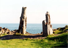 Wickerman - Leg stumps at Burrowhead